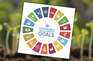 inbioar ODS Sustainable Development Goals (UN)